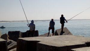 Pescadores Molhe Norte 20171005_124621