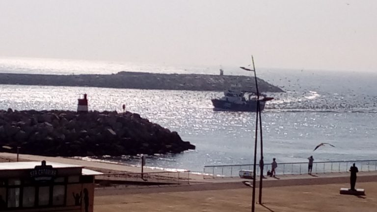 Seagulls … Sky … Sea …